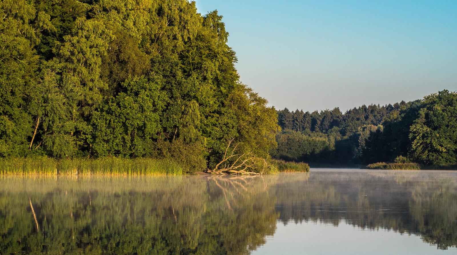 Derselbe Teich, ein anderer Blickwinkel. Mit der Sonne im Rücken sieht es gleich viel weniger verzaubert aus.