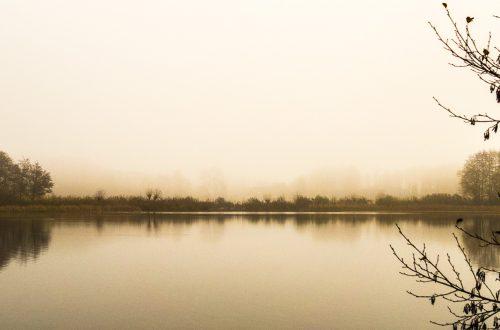 Ein kleinerer der Hoisdorfer Teiche im Morgennebel, Panorama-Querformat