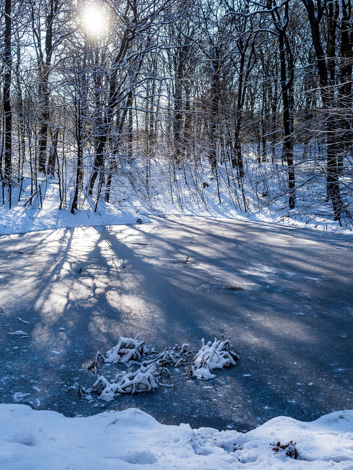 Wasserbecken in den Harburger Bergen mit viel Schnee drumherum