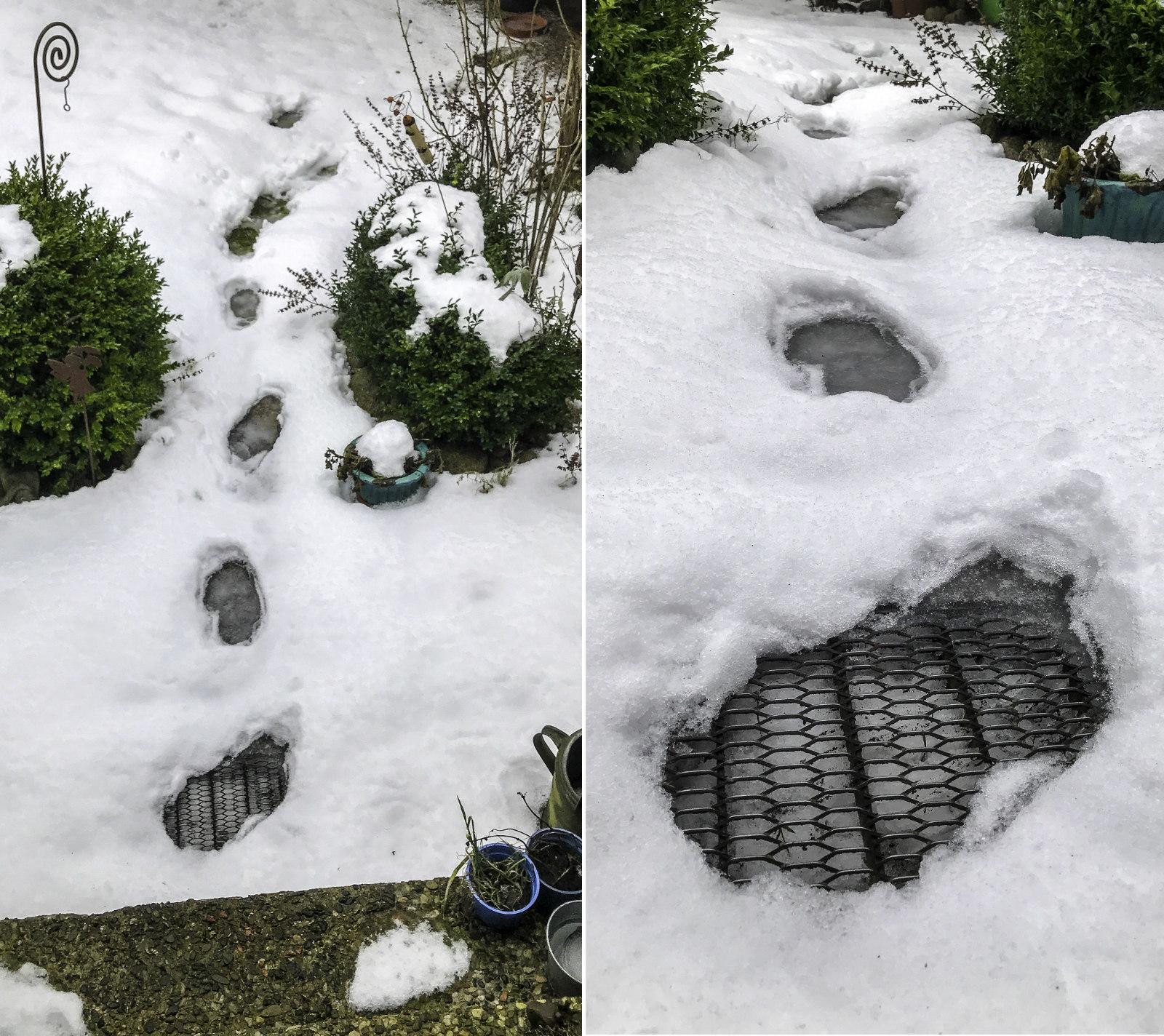 Antauende Fußspuren im Schnee
