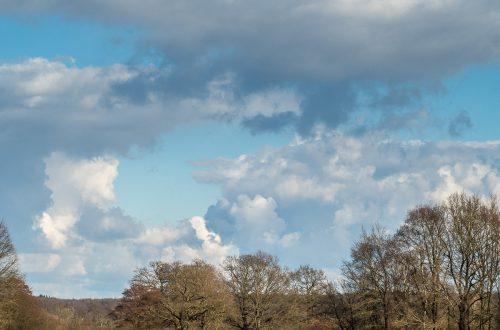 Feld mit Pferd, Teich mit Schwan und viel Himmel dabei