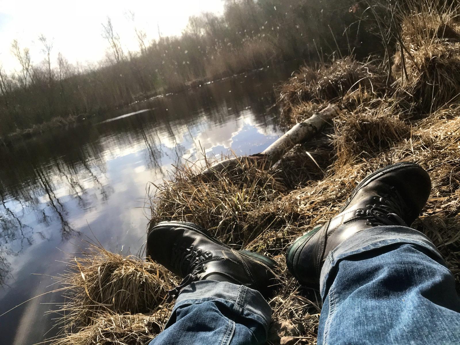 In der Sonne, im Moor