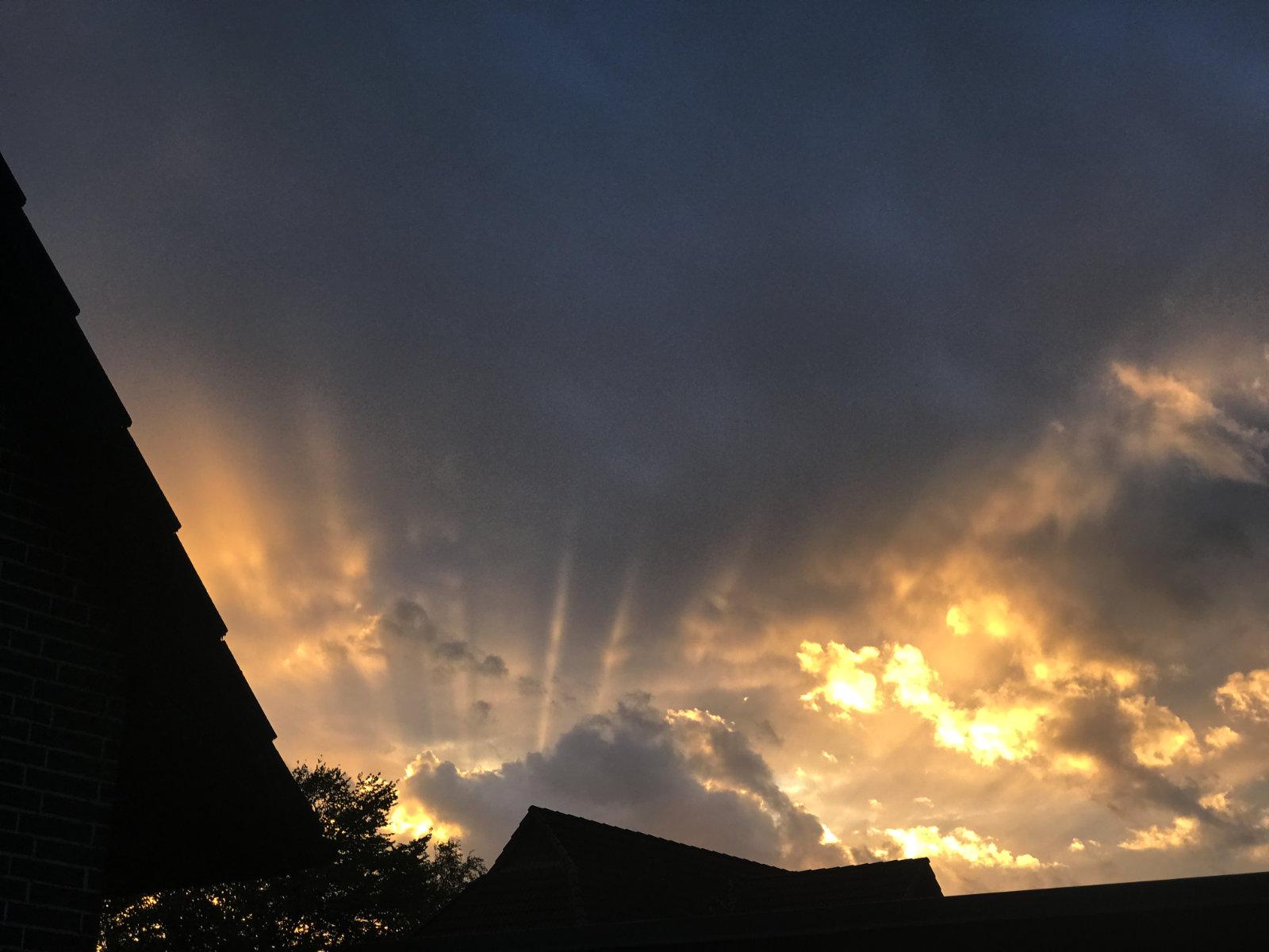 Sonnenuntergang über unserem Garten
