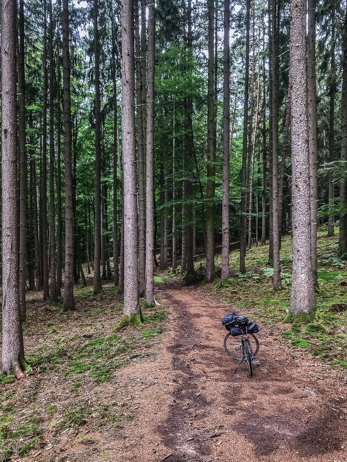 Wanderweg im Spessart, mit Fahrrad